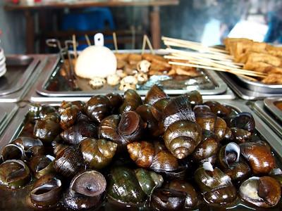 Large snails